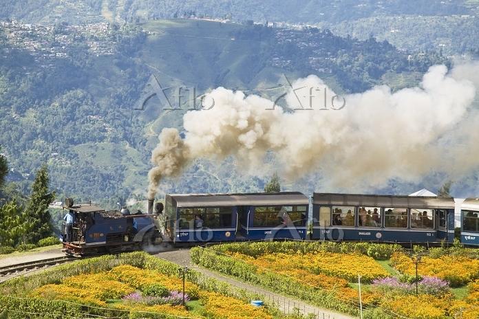 ダージリン・ヒマラヤ鉄道の画像 p1_28