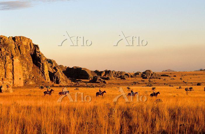 アフリカ イサロ国立公園