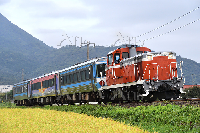 香川県 土讃線 DE10牽引訓練運転列車