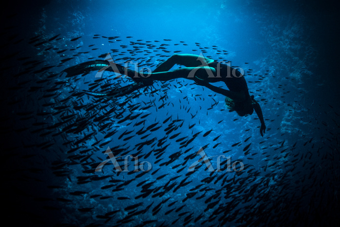 Woman freediving, underwater v・・・