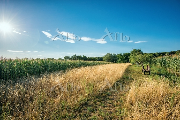 HDR capture of a secluded spot・・・