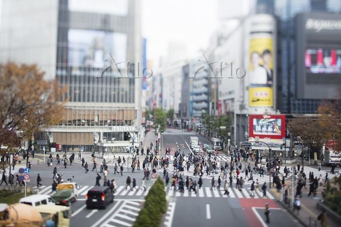 渋谷区ミニチュア風