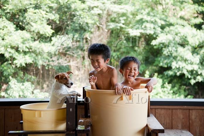 水遊びをする犬と日本人の子供