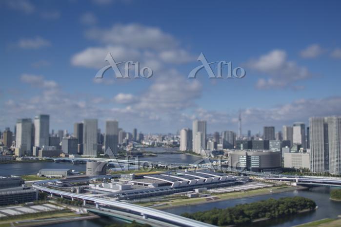 豊洲市場と豊洲、晴海周辺のビル群と青空