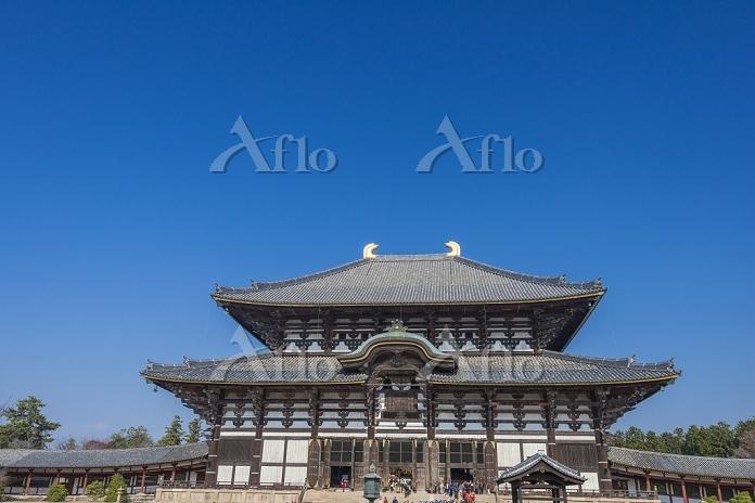 奈良県 奈良市 東大寺大仏殿