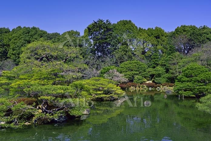 京都府 平安神宮