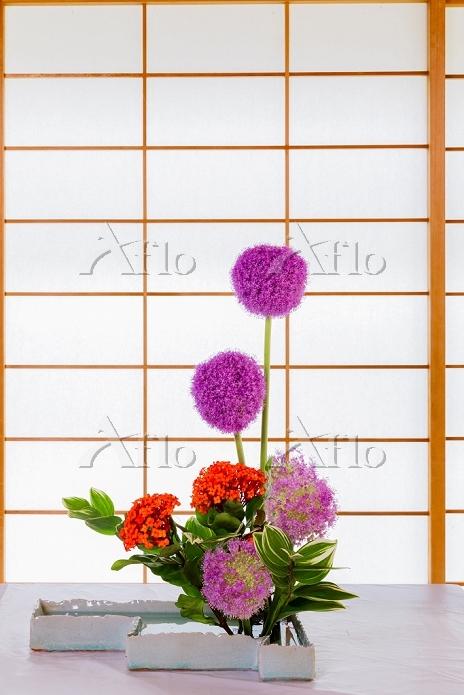 華道 生け花 アリウムとサンタンカ
