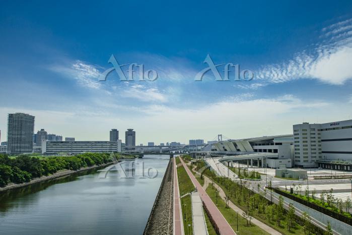豊洲市場7街区と東雲運河