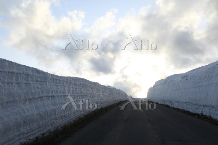 夕日の当る八幡平アスピーテラインの雪の回廊