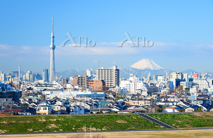 千葉県 富士山と東京スカイツリーの遠望