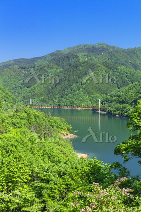 福井県 新緑の九頭竜湖