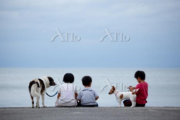 海辺の子供と犬 瀬戸内