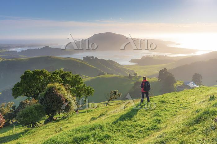 ニュージーランド ダニーデン近郊 オタゴ半島 ハイカーとフー・・・