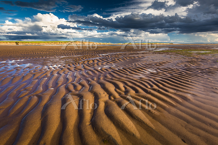 sand pattern at low tide, Sout・・・