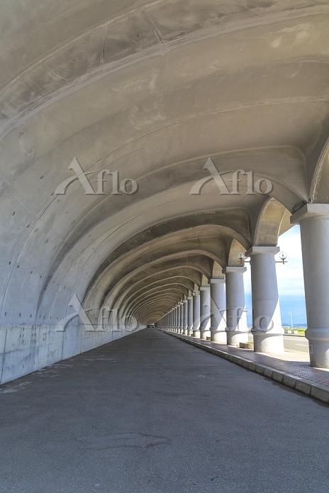 北海道 北防波堤ドーム