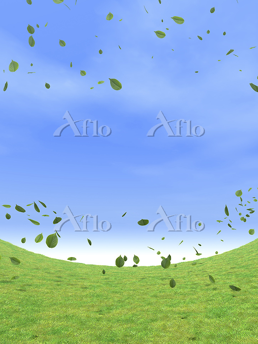 湾曲する草原と風に舞う緑の葉