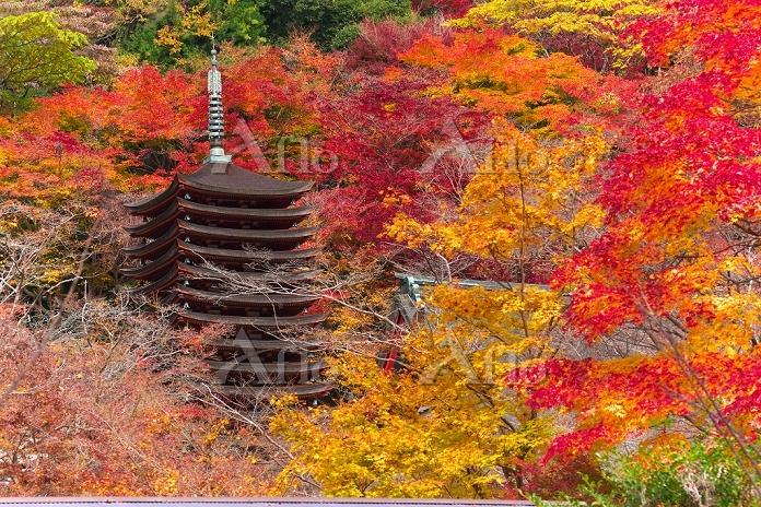 奈良県 談山神社 十三の塔
