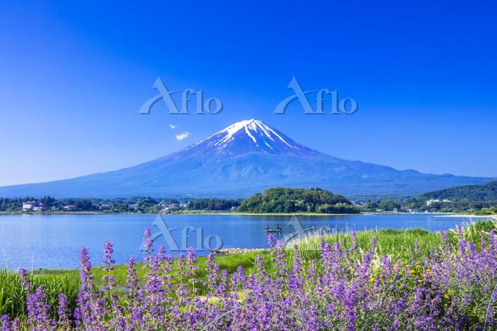 山梨県 富士山と河口湖