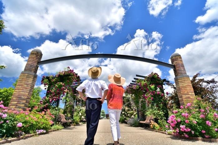 薔薇の庭園の二人
