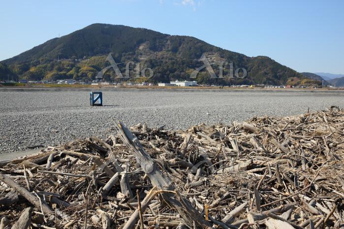 静岡県 渇水(瀬切れ)の安倍川と流木