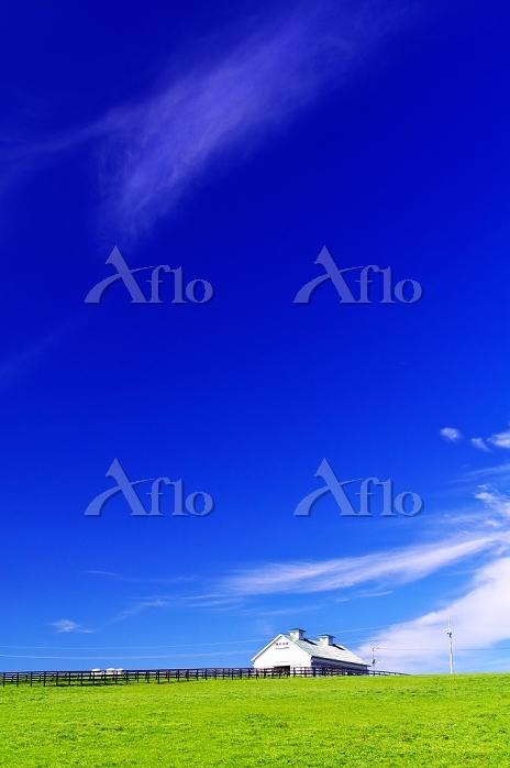 北海道 草原の丘と白い牧場の厩舎