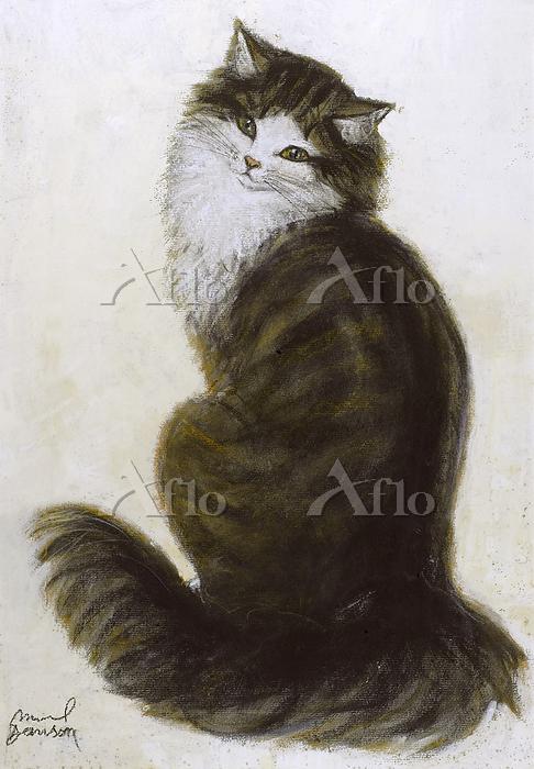 Study of a cat by Muriel Dawso・・・