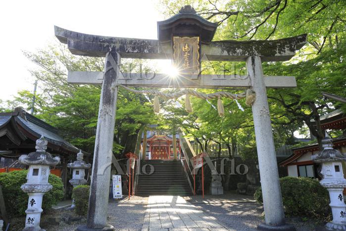 京都府 御霊神社の参道と拝殿