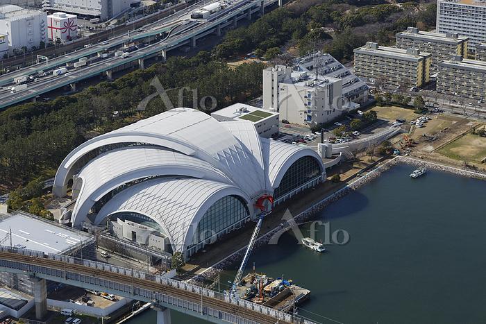 東京都 東京辰巳国際水泳場 空撮