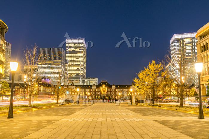 東京都 東京駅丸の内駅前広場 夜景