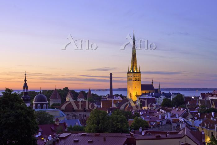 エストニア タリン 旧市街 夕景