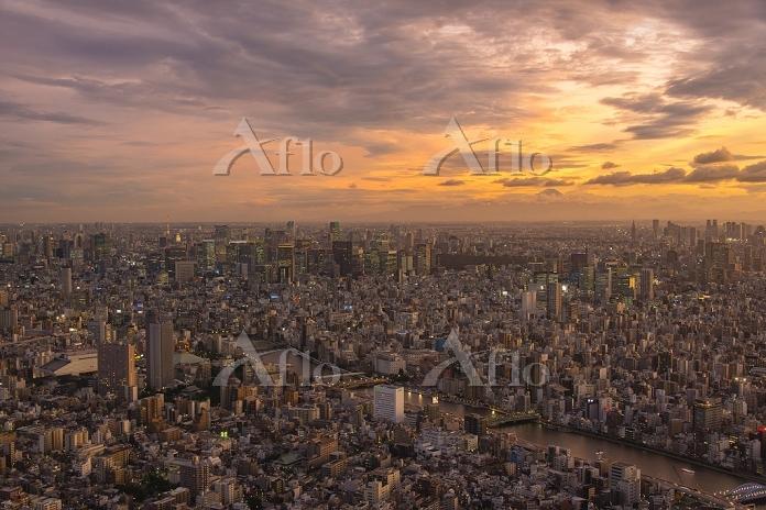 東京都 スカイツリーから見た夕方の街並み