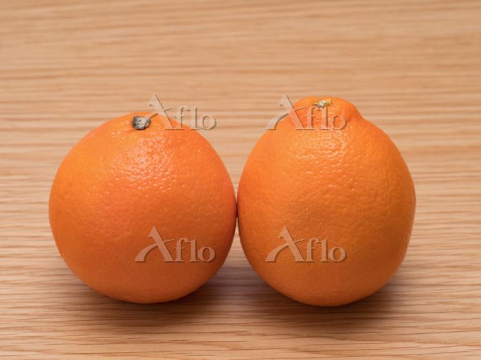 オレンジ ミネオラ