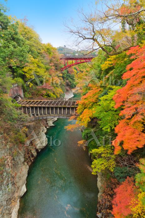 山梨県 紅葉の猿橋