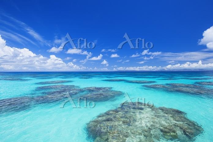 沖縄県 夏の波照間島 珊瑚礁