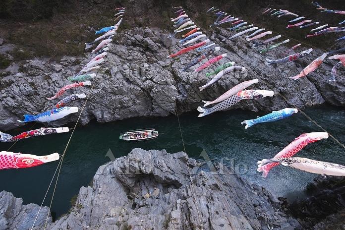 徳島県 大歩危峡と吉野川とこいのぼり