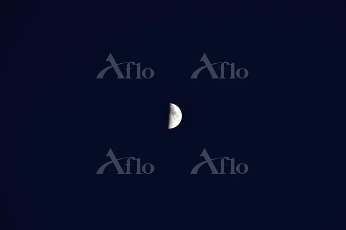 青森県 月(月齢7)