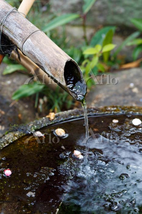 竹筒から流れる水
