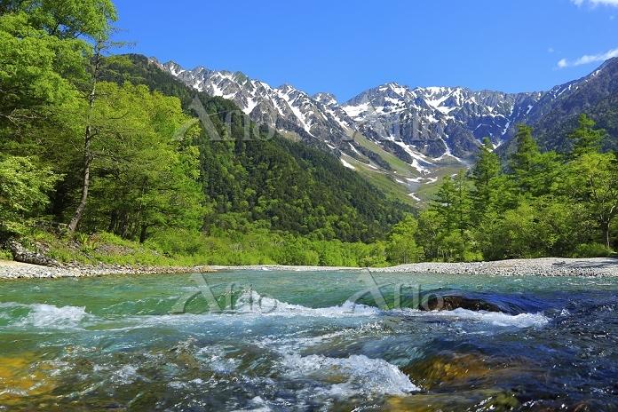 長野県 上高地 新緑の梓川と残雪の穂高連峰