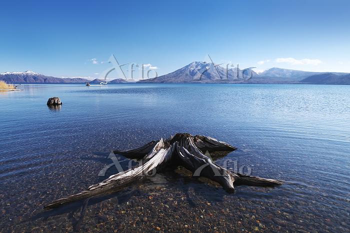 北海道 支笏湖と風不死岳と枯木