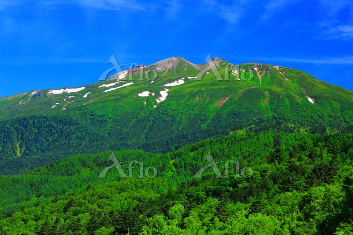 岐阜県 高山市 野麦峠から望む乗鞍岳
