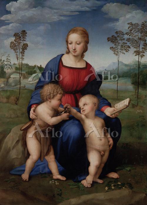 ラファエロ 「ひわの聖母」
