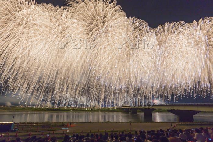 新潟県 長岡まつり大花火大会 フェニックス