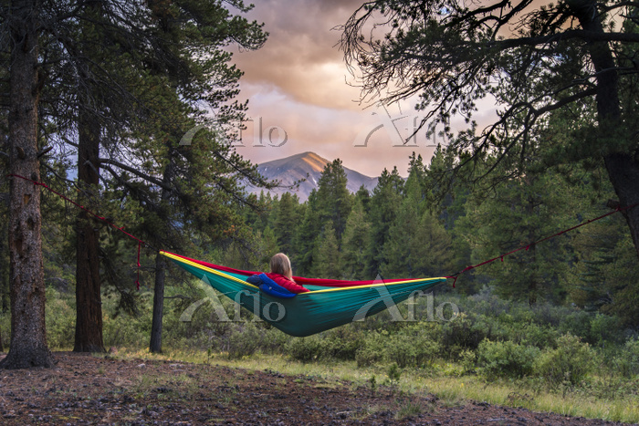 Woman resting in hammock at fo・・・
