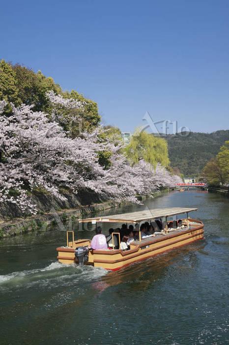 京都府 十石舟