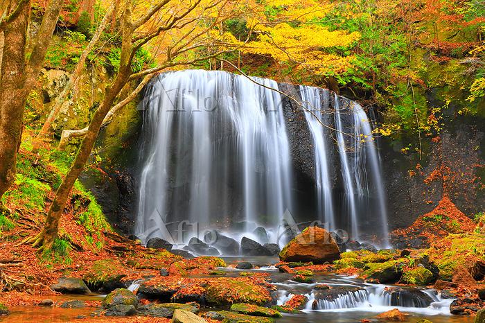 福島県 紅葉の達沢不動滝