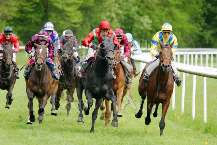 スイス 競馬