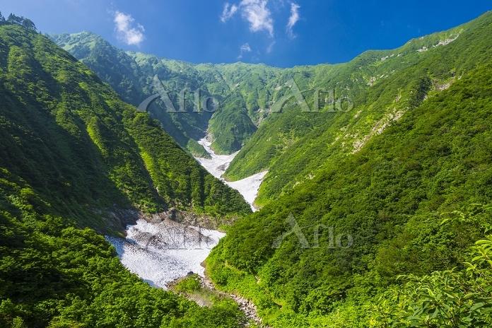 新潟県 荒沢岳の万年雪