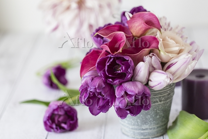 紫のチューリップとカラーのアレンジメント