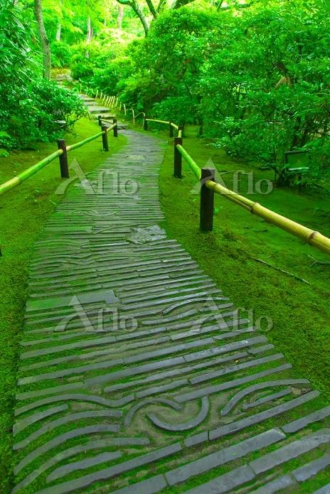 京都府 大河内山荘(大河内傳次郎別邸) ミドリの小道