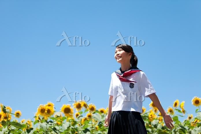 両手を広げる笑顔の女子高校生とヒマワリ畑